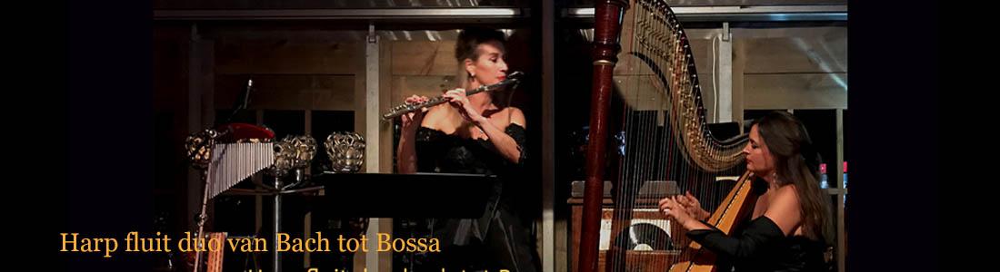 Harp fluit duo van Bach tot Bossa licht klassieke muziek en lichte muziek
