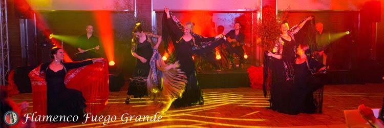 Flamenco Fuego Grande
