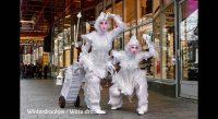 Winter wonderland entertainment